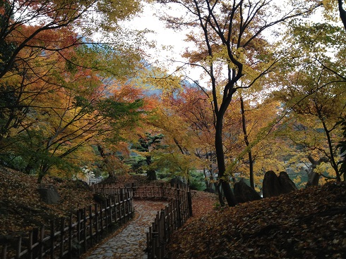 栗林公園紅葉2