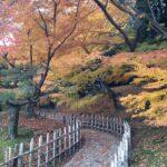 香川観光「栗林公園」の見どころは紅葉