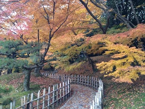 香川観光「栗林公園」で素晴らしい紅葉を堪能