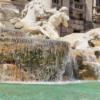 「水道水は飲まない」認知症を発症する危険性