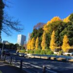 品川~川崎の13kmを歩いた【東海道を歩く】