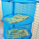 人気レシピの手作り「干し芋」が簡単美味しい、保存方法も重要