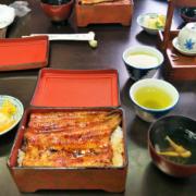 小田原「柏又」で美味しいうなぎ