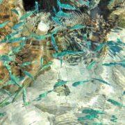 物だけでなく人間も大量生産・大量消費・大量廃棄される日本の環境