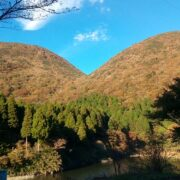 箱根湯本から元箱根の11.3kmを歩いた①【東海道を歩く】