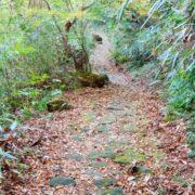 江戸時代の東海道は、のんびり気ままに歩いている人も多かった
