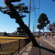 藤枝から島田までの8.3kmを歩いた【東海道を歩く】