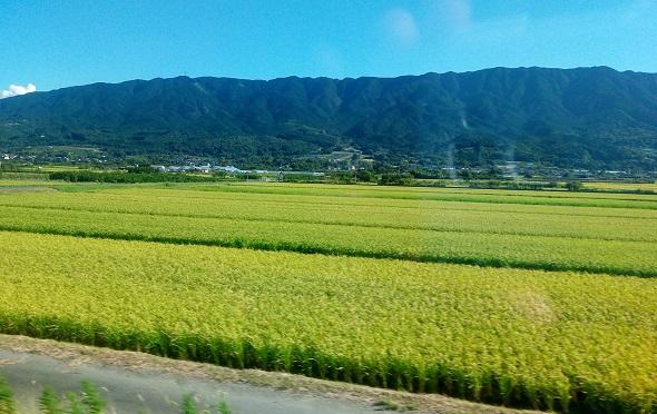 【3泊4日長崎・佐賀・大分旅行】吉野ヶ里遺跡から湯布院へ